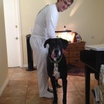 My First Thoughts about Bubba (My First Great Dane)